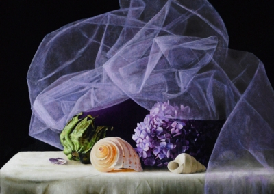Veiled Still Life with Eggplant, Hydrangea and Shells